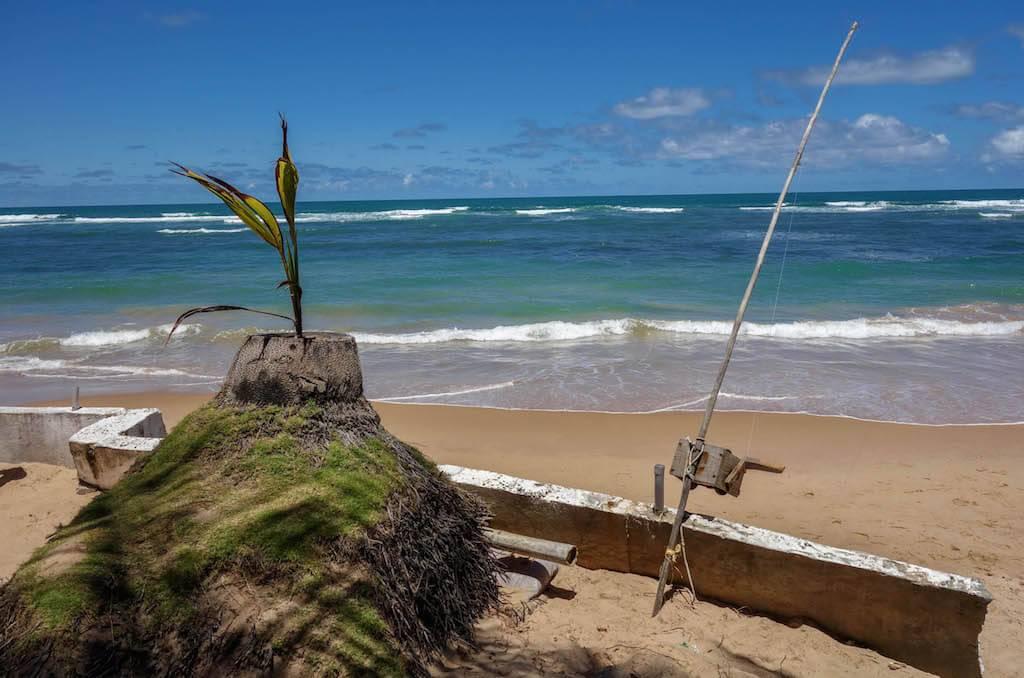 praia-de-saquaira-peninsula-do-marau-bahia
