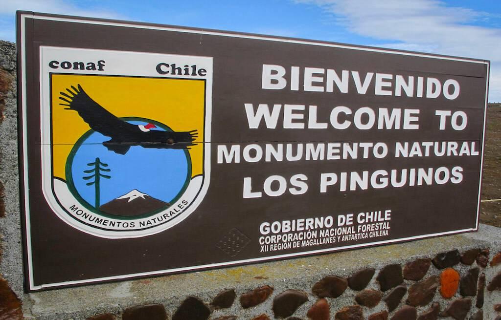 isla-madalena-punta-arenas-patagonia