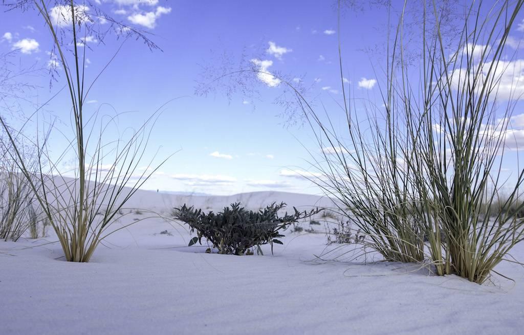 deerto-areias-brancas