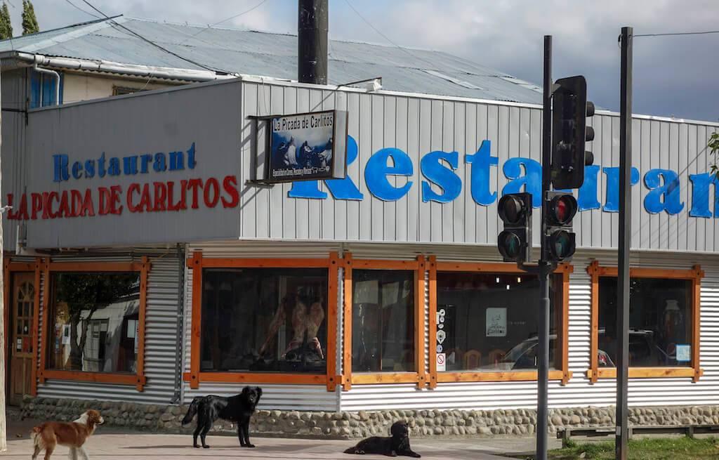 la-picada-de-carlito-patagonia-chilena