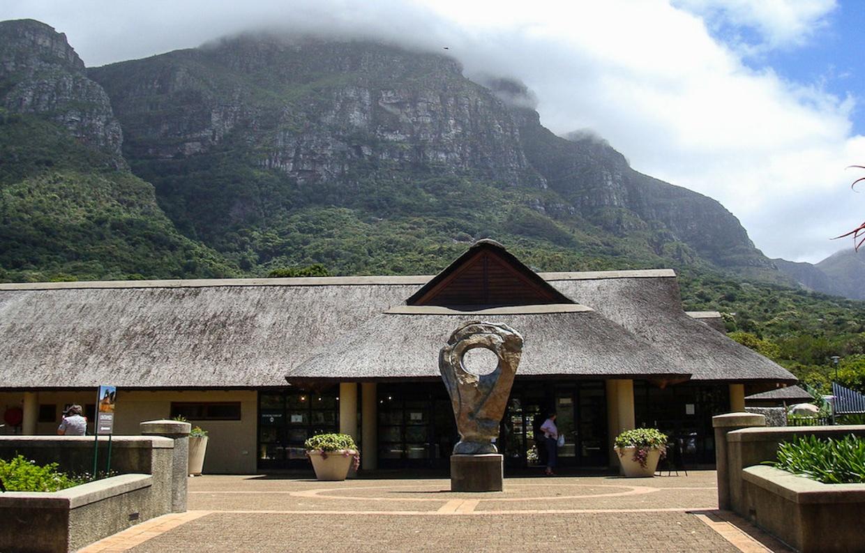 table-mountain-jardin-botanico