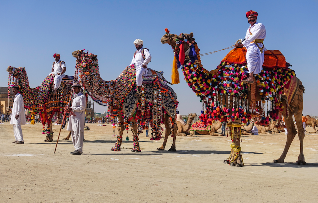 thar-desert-camelos-jaisalmer
