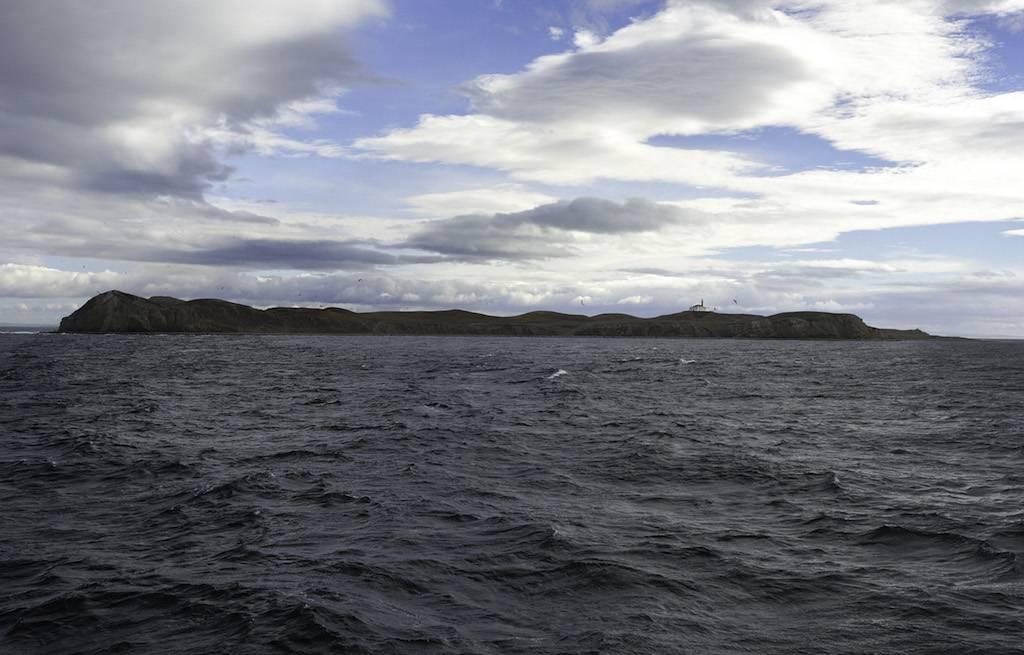 isla-magdalena-chile