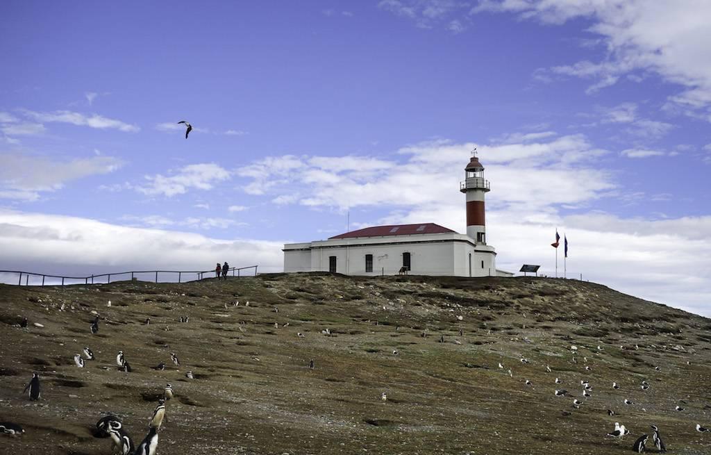 farol-light-isla-magdalena