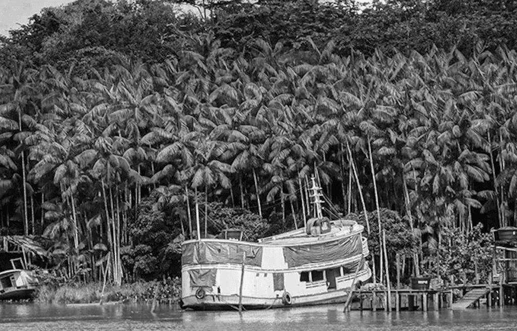 viagem-de-barco-pelo-amazonas