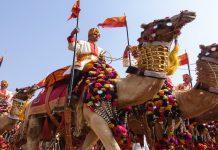 desert-festival-deserto-camelo-india