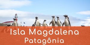 isla-magdalena-magalhaes-patagonia-chile