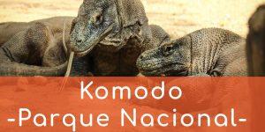 parque-nacional-komodo-blog-viagem